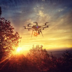 wild_drone