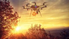 wild_drone_banner
